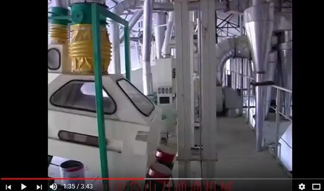 Corn Flour Mill Line Built in Zhangxifeng Liangyou Co., Ltd.